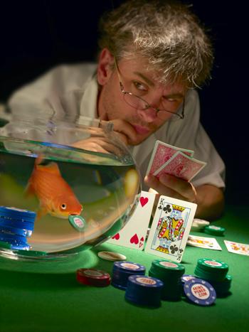 fish play poker 2